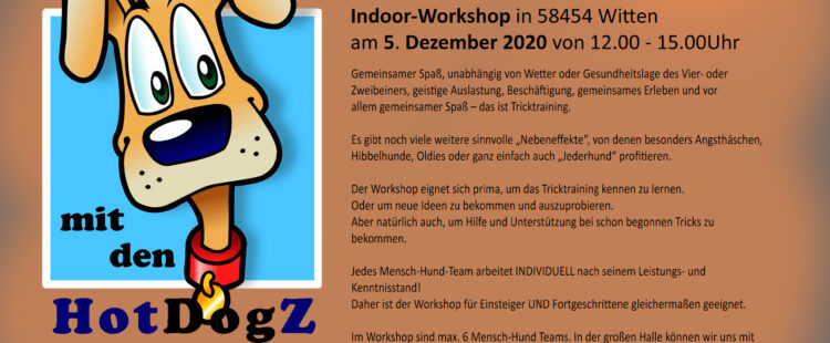 Tricktraining – Workshop!